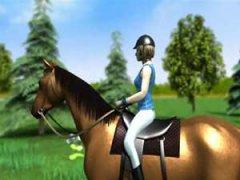 Sauter les obstacles à cheval