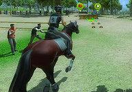 Parcours équestre de cheval