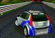 Pilotage de voiture rallye